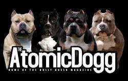 atomicdoggmagbanner-new-1.jpg