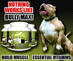 bully-max-supplements.jpg